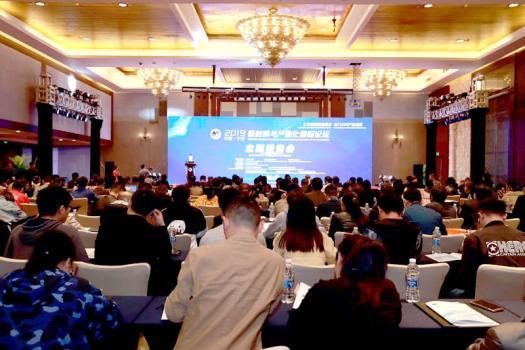 2019中国(宁波)新材料与产业化国际论坛开幕